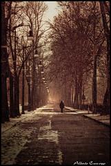 Alone - Torino (Alberto Carrozzo) Tags: winter white snow black river torino fiume neve po inverno turin riflesso