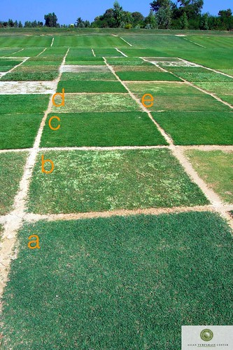 atc fairway plots