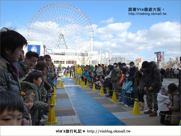 【via關西冬遊記】大阪海遊館~冬季限定!無敵可愛企鵝遊行來囉!10