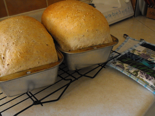 baking bread 2