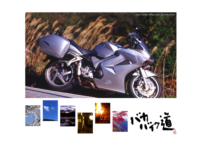 mmbb800x600.jpg
