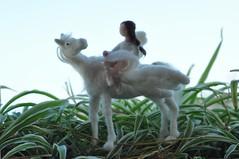 Needle felted Pegasus (daria.lvovsky) Tags: birthday holidays princess waldorf valentine fantasy unicorns fiberart needlecraft nickelodeon needlefelted childfriendly needlecraftdollsandminiatures softsculptureetsynaturalkidsteam