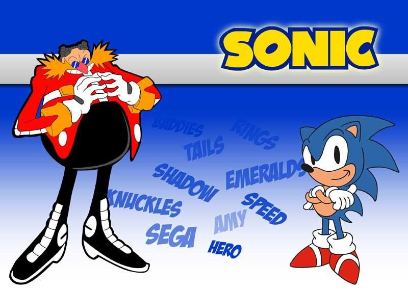 Sonic Laptop Skin