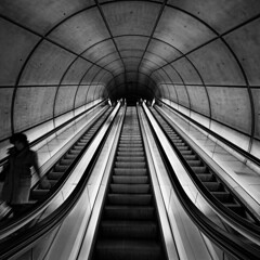 Sueño con serpientes. I dream about snakes. (Javier Enjuto García) Tags: bw blancoynegro underground arquitectura metro olympus bilbao normanfoster e510 roybatty zd714mm ysplix enjuto fdv2010 javierenjuto javierenjutogarcía