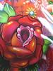 SEAK Rose