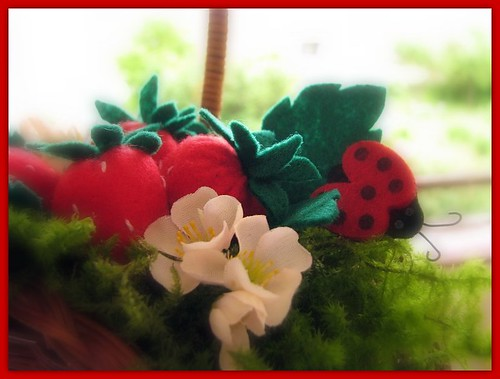 Maasikakorv