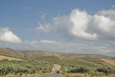 Crete Landscape / Krajobraz Krete (Vjekoslav1) Tags: grčka greece crete kreta mediteran sredozemlje europa europe landscape krajobraz nebo sky zelenilo green road cesta way travel putovanje path