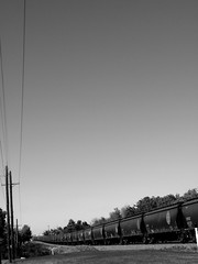 On and On in B&W (Julia TortoiseHugger) Tags: railroad blackandwhite bw oklahoma train vanishingpoint industrial loneliness bluesky trains norman southern isolation forever ok telephonepole bnsf telephoneline bnsfrailwayco burlingtonnorthernandsantaferailway