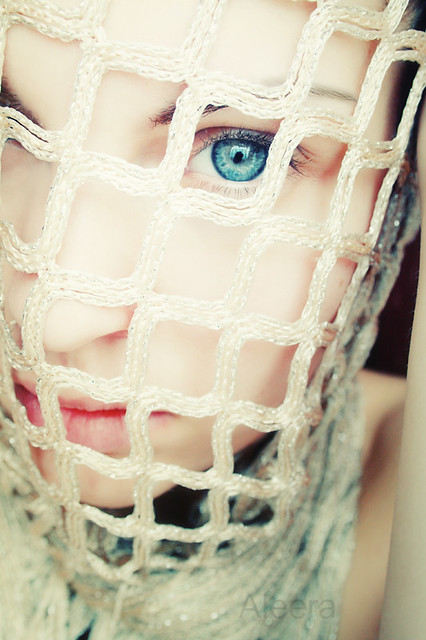 Bird in a cage/ Fisheye