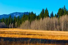 Autumn at Sierra Nevada_1 (nejmantowicz) Tags: california mountains hiking nevada sierra coth supershot abigfave impressedbeauty nejmantowicz canong9 74444mm dragondaggerphoto dragpndaggeraward