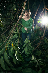 326/365 November 22, 2009 (laurenlemon) Tags: ca portrait tree green leaves losangeles interestingness flash flare 365 365days explored canoneos5dmarkii november09 laurenrandolph laurenlemon iseefallentreefallentreeendsupinpicture