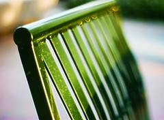 Think very seriously about the GREEN BENCH :-) (...-Wink-...) Tags: bench dof maco nikkor50mm18 venturacalifornia nikond80