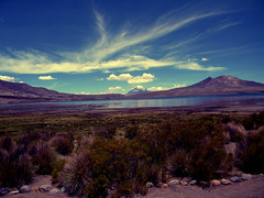 chungara (LAura Martina) Tags: chile sky naturaleza lake nature lago cielo chungara