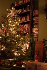our pretty tree