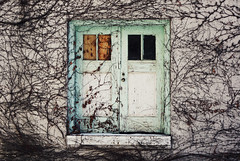 (margolove) Tags: old winter columbus ohio leaves canon 50mm vines doors decay ivy osu bracken dslr 18 digitalrebel ef rundown xsi shabby