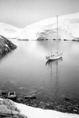 880204 Melchior Islands (rona.h) Tags: 1988 antarctica february cloudnine ronah melchiorislands