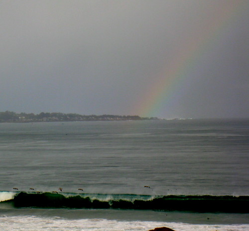 Rainbow, breakers and pelicans