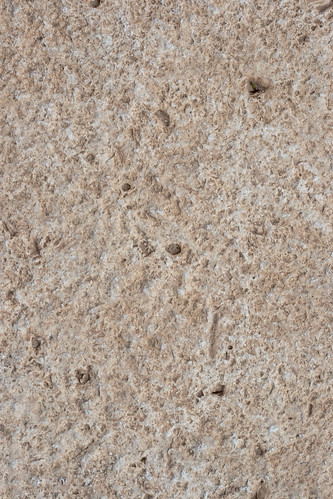 Texture: Dirty Bumpy Wall
