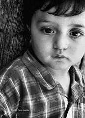 ... (pino ientile) Tags: portrait people bw blackwhite child son bn ritratto calabria biancoenero martone bambino
