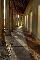 Pillar Shadows HDR (chiwalatta) Tags: pillars longlea