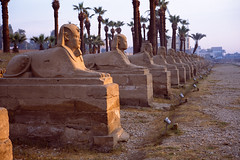 -Farewell to the Many Faces- (Adam Marelli) Tags: leica sphinx river 50mm ancient fuji 28mm great egypt nile summicron cairo temples gods pyramids meditation ttl aswan luxor provia civilizations m6 goddesses elmarit