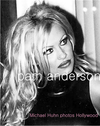pamela anderson naked pictures getting fucked hard