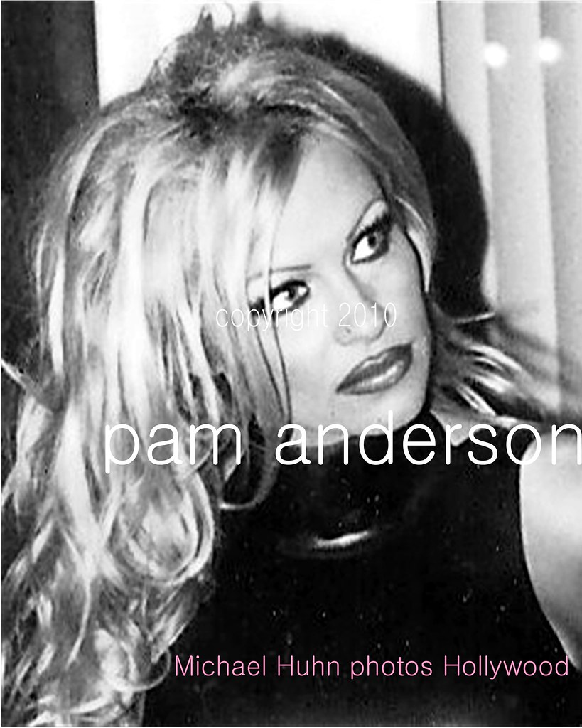 pam anderson by Michael Huhn michaelhuhn.com