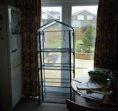 Greenhouse in sheltered spot