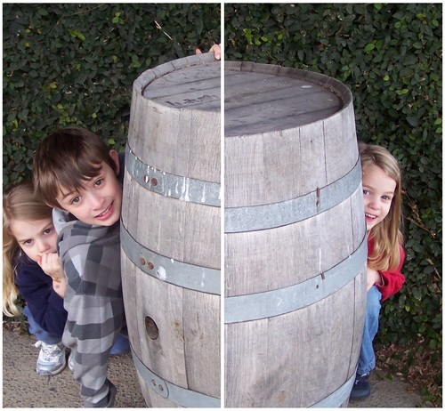 Kids at Bogle Vineyards