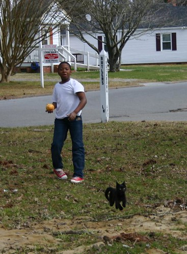 Elizabeth City - Jacal and Qubit Playing Fetch (Cropped)
