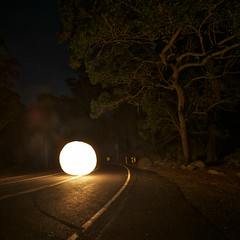 Royal Orb (alexkess) Tags: park light lightpainting wool night painting fire photography wire nikon long exposure flickr dire flames sydney royal orb australia photoblog national nsw shire alexander juggling pyro tobias sparks sutherland natio wirewool firepainting d700 alexkess kesselaar lightpainters firewool huenlich