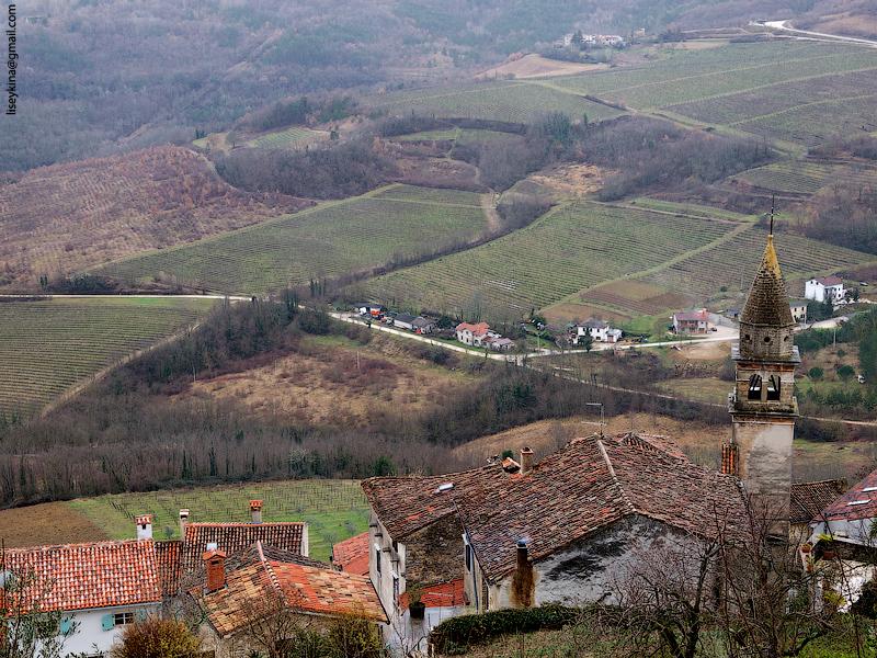 Motovun. Croatia