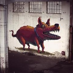 Guarding (Fat Heat .hu) Tags: dog art graffiti big mural rollup fatheat