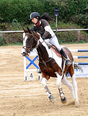SHM_6681 (laurent mataillet) Tags: cheval jumping concours equitation rahon sautdobstacles