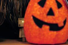 It's Almost Here (.Happy.C.) Tags: halloween pumpkin toys nikon target dslr tamron 萬聖節 yotsuba danbo 2875mmf28 蛋包 danboard d300s 阿愣 紙箱人