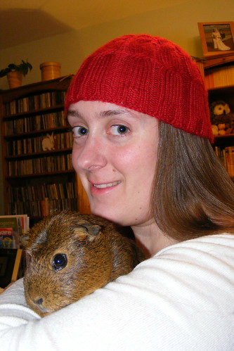 Fibonacci cable hat (and Brownie)