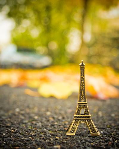 Dainty: Autumn Eiffel