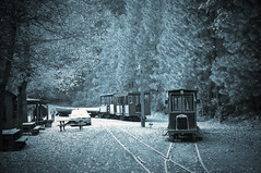 Yosemite Mountain Sugar Pine Railroad (MissMae) Tags: nostalgia 1940s yosemite week47 weeklywinner 5212of2009 themefromthedecadeyouwereborn savagephotography
