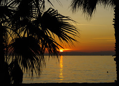 A sunset in Paleo Faliro, Athens (n.pantazis) Tags: pink trees sunset sea sun reflection tree beach water leaves swimming framed greece frame swimmer trunk dslr kx pentaxkx calmsea planetrails paleofaliro buoyant dal1855