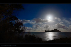 Manana Island Moonrise (Rex Maximilian) Tags: ocean sunset sea moon beach night hawaii twilight oahu moonrise 169 windward makapuu ironwoodtree rabbitisland 16x9 mananaisland hdformataspectratio