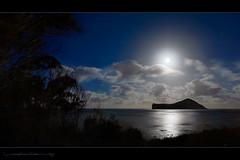 Manana Island Moonrise (Rex Maximilian) Tags: ocean sunset sea moon beach night hawaii twilight oahu moonrise 169 windward makapuu ironwoodtree rabbitisland 16x9 mananaisland hdformataspectratio
