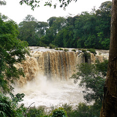 Laos Bolaven Tad Lo waterfall (Bn) Tags: topf50 dailylife route20 nationalgeographic naturalframe tms rainyseason freshwaterfish southernlaos tellmeastory 50faves tadlo bolavenplateau tidders threespinedstickleback salavanprovince rainymonsoon beautifulforest travelersparadise gushingwaters catchingsmalltiddlers ethnicvillagesnearby junglepathleft1kmupstreamtotadlowaterfall viewfromtadloresort incredibleambiance taatlowaterfall tadlowaterfall sexetriver villageofkiengthanlei natureandrurallife laosbolaventadlowaterfall localsfishinginthesexetriver peacefulandscenic therhythmofthejungle xesetriver