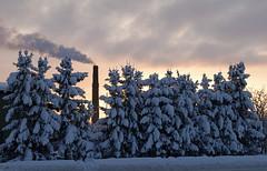 (Jaan Keinaste) Tags: winter snow suits estonia pentax smoke lumi eesti talv k7 vanagram raevald