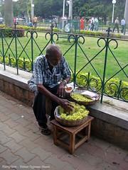 bij het Maharaja paleis / at the Maharaja palace (dietmut) Tags: travel november india reisen asia journey karnataka 2009 sonycybershot reizen azi federalstate sonydsct200 dietmut deelstaat