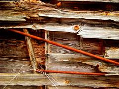 shackrust (LauraSorrells) Tags: wood metal this rust monroe shack exploration 2009 trespassing waltoncounty
