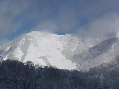 尻別岳西方989m峰南斜面