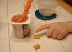 yogurt & goldfish
