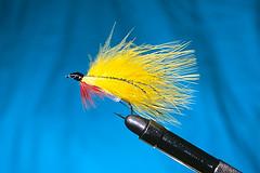 Yellow Marabou Streamer (rob_valine) Tags: film fishing bass nikonf100 flies flyfishing trout studiolighting flytying photoshopelements20 fujiprovia100f nikoncoolscanved eliteimages elitephotography multiplelighting tiffen81awarmingfilter studiosystemssp920mdlvpmonolight snootattachment maraboustreamers nikkor60mmmacrof28lens
