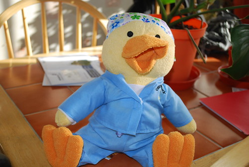 Chemo duck (7/365)