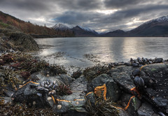 Loch Duich Mussels (BarneyF) Tags: cloud snow mountains seaweed reflection water scotland highlands scottish 9 loch mussels hdr limpet exp duich photomatix
